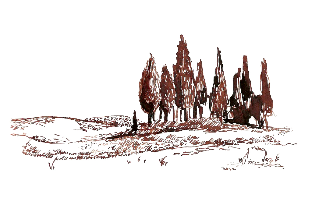 dominiqueChirinciuc_landscape